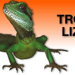 lizards-t