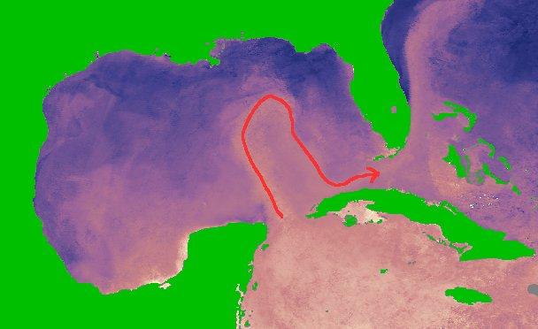 Loop Current (Fonte Wikipedia)