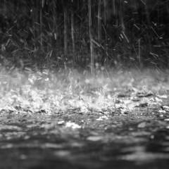 Precipitazioni di 8 stazioni italiane