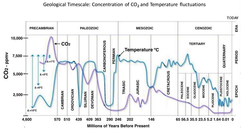 Figura 1 – Andamento delle temperature globali e dei livelli atmosferici di CO2 (Moore, 2016).