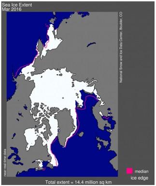 Fig. 4. Massimo di estensione dei ghiacci artici nel Marzo 2016. Fonte: www.nsidc.org