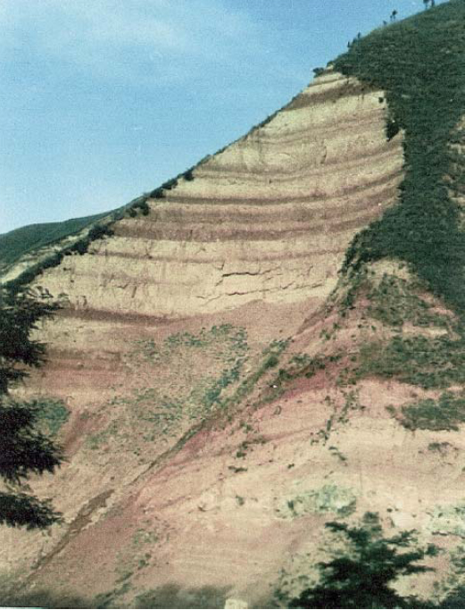 Figura 2 – Sequenza di paleo suoli a loess nei pressi di Xian (parte sudorientale del plateau cinese a loess, 200 km a est di Baoji) (Rutter, 2009). In complesso la sezione, alta circa 150 m, copre un periodo di 2 milioni di anni e illustra con efficacia la potenza del fenomeno del trasporto eolico nelle ere glaciali quaternarie. Le bande più scure si sono prodotte nelle fasi interglaciali.