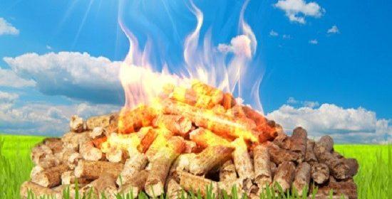 Biomassa e Ciclo del Carbonio, ora arriva anche Science a dare lo stop