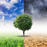Tre le righe dell'ultimo Report IPCC