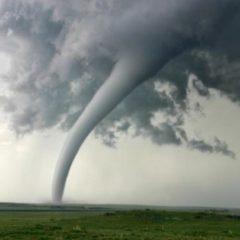 No Tornado No Party