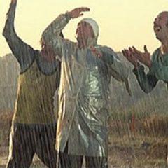 Piove, Governo ladro!