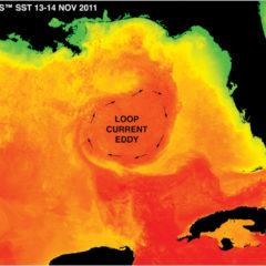 A volte ritornano, il disastro ambientale della BP nel Golfo del Messico