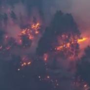Il Declino Globale di Incendi di Boschi e Praterie