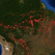 Gli Incendi del 2019 del Bacino del Rio delle Amazzoni – Cosa Emerge dai Dati GFED