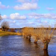 Fasi Climatiche Calde ed Eventi Alluvionali Estremi – Evidenze Storiche