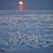 Il massimo spettrale di 18.6 anni in serie biologiche e climatiche del Mare di Bering