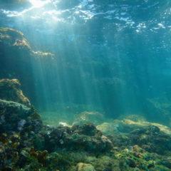 Carotaggi oceanici profondi nell'Oceano Pacifico