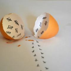 E' nato prima l'uovo o la gallina?