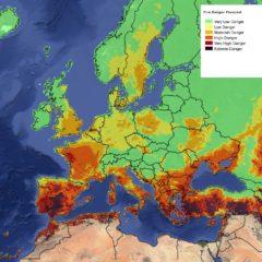 In calo gli incendi boschivi in Europa e nel Mediterraneo
